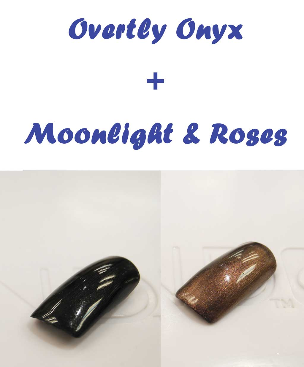 Overtly Onyx + Moonlight & Roses